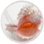 Rose Murex Seashell Round Beach Towel
