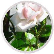 Rose Named Pearl Round Beach Towel