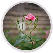 Rose Of Independence Round Beach Towel
