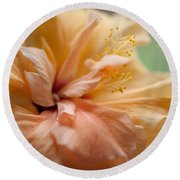 Rose Of Sharon. Hibiscus Round Beach Towel