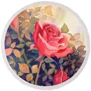Rose On A Warm Day Round Beach Towel