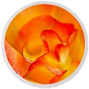 Rose Petals Closeup Round Beach Towel