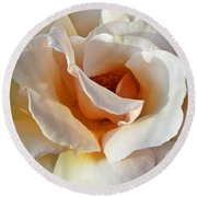 Rose Upclose Filtered Round Beach Towel
