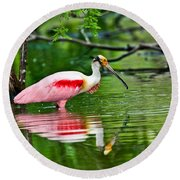 Roseate Spoonbill Wading Round Beach Towel