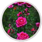 Roses In The Garden Round Beach Towel