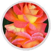 Roses Of Many Colors Round Beach Towel