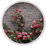 Roses On Brick Wall Round Beach Towel by Elena Elisseeva