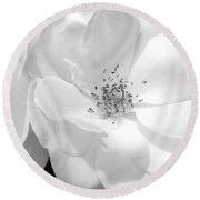 Roses Soft Petals In Black And White Round Beach Towel