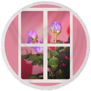 Roses Through The Window Round Beach Towel