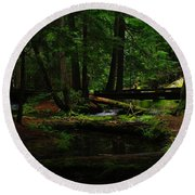 Ross Creek Montana Round Beach Towel