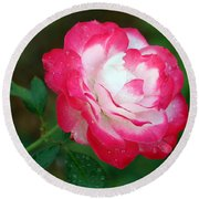 Rosy Reds And Whites Round Beach Towel