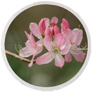 Rosy Rhododendron Round Beach Towel