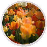 Row Of Colorful Tulips Round Beach Towel