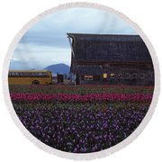 Rows Of Multi Colored Tulips In Field With Old Barn And Yellow B Round Beach Towel