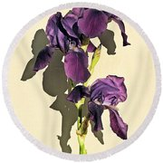 Royal Purple Iris Still Life Round Beach Towel