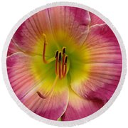 Royal Heritage Daylily Face Round Beach Towel