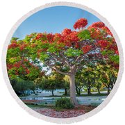 Royal Poinciana Round Beach Towel