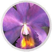 Royal Purple Cattleya Orchid Round Beach Towel