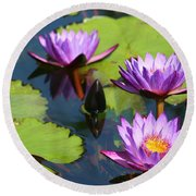 Royal Purple Water Lilies Round Beach Towel