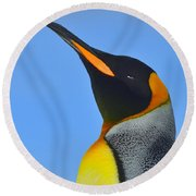Royal Squinting Round Beach Towel by Tony Beck