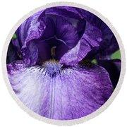 Royale Purple Petals Round Beach Towel