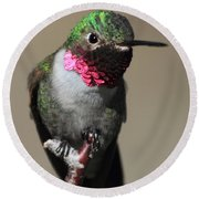 Ruby-throated Hummer Round Beach Towel