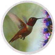 Ruby Throated Hummingbird Digital Art Round Beach Towel