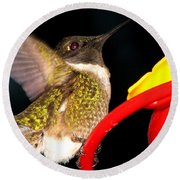 Ruby-throated Hummingbird Landing On Feeder Round Beach Towel