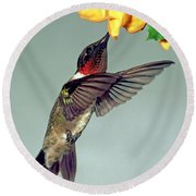 Ruby-throated Hummingbird Male At Flower Round Beach Towel