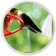 Ruby-throated Hummingbird Pooping Round Beach Towel