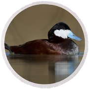 Ruddy Duck On Still Pond Round Beach Towel