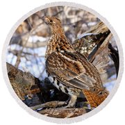 Ruffed Grouse On Alert Round Beach Towel