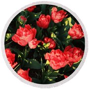 Ruffly Red Tulips Square Round Beach Towel