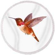 Rufous Hummingbird Round Beach Towel by Amy Kirkpatrick