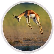 Running Springbok Jumping High Round Beach Towel