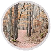 Rustic Trails In January 2013 Round Beach Towel
