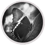Rusty Tip Butterfly Black And White Round Beach Towel