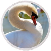 S Is For Swan Round Beach Towel