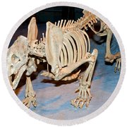 Saber-toothed Cat Round Beach Towel