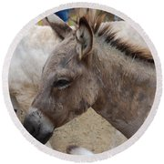 Sad Wild Donkey Round Beach Towel