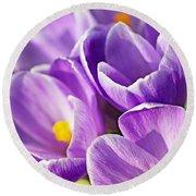 Saffron Flowers. Round Beach Towel