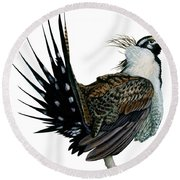 Sage Grouse  Round Beach Towel by Anonymous