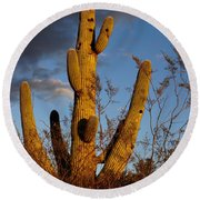 Saguaro 2 Round Beach Towel