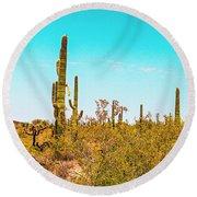 Saguaro Cactus In Organ Pipe Monument Round Beach Towel