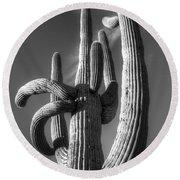 Saguaro Cactus Monochrome Round Beach Towel