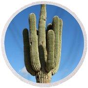 Saguaro Round Beach Towel