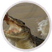 Salt Water Crocodile 2 Round Beach Towel