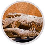 Salt Water Crocodile Skull Round Beach Towel