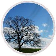 Same Tree Many Skies 11 Round Beach Towel