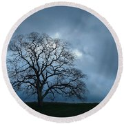 Same Tree Many Skies 14 Round Beach Towel